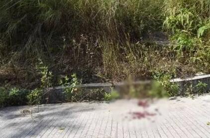 恩平鳌峰山樱花园附近一名男子自杀身亡 身上有多处伤痕