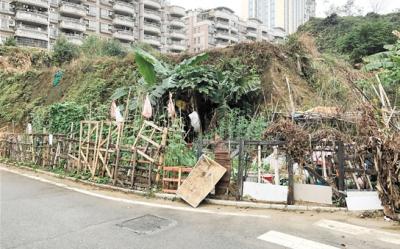 """天福社区创文小组 8个多小时铲除小区垃圾""""毒瘤"""""""