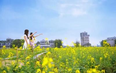 """你未曾发现的美景,江门乡村的""""诗和远方"""""""