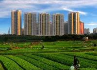 土地制度改革迈出重要一步