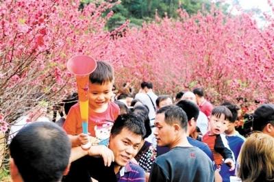 """这个春节,你到江海区城央绿廊""""打卡""""了吗?"""