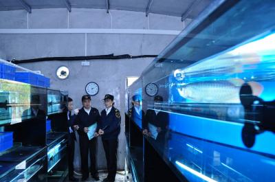 今年上半年 江门海关助力水产品出口2.04亿美元