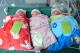江门90后二孩妈妈迎来三胞胎 几率堪比中彩票头奖