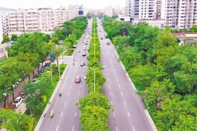 多条市政道路升级 提升市民出行获得感
