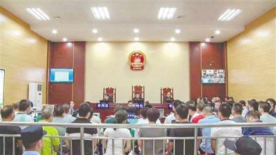 开平人民法院公开审理涉恶犯罪案件 涉案金额约5亿