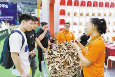 新会陈皮(柑茶)产业探索突围之策