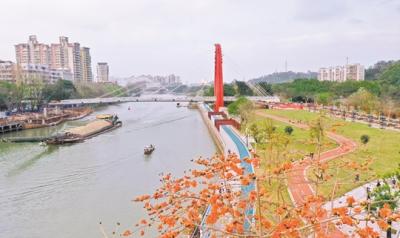 高新区(江海区)推进入河排污口整治工作