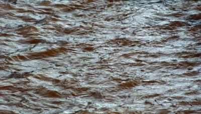 河段發生超警戒洪水?原來是防風抗洪演練