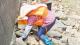 崖门镇有支海堤保洁和堤防养护队伍