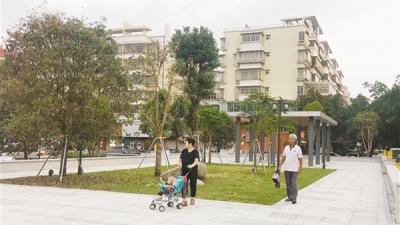 台山见缝插绿提升城区环境质量  城区长岭公园对外开放
