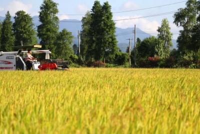 我市在建水利工程复工率达六成  全力保障农业灌溉需要
