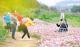 五邑春来早 万物竞芳菲  春节假期,赴一场花之盛宴!