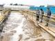 线上办公、特事特办、远程监管……环保部门助力复工复产