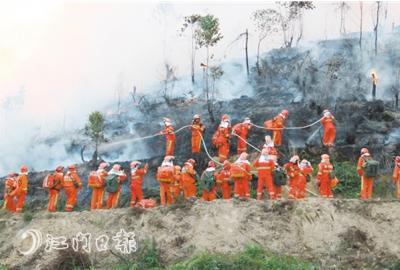 抓好森林资源管护 为生态环境增添一道天然屏障
