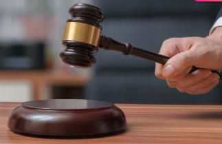 蓬江法院严打黑恶势力 今年以来已受理涉黑恶案31件125人