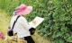 杜阮镇中和村举办夏季凉瓜文化节