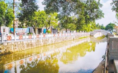 蓬江区充分发挥示范村带动作用  有力推动全区乡村振兴工作