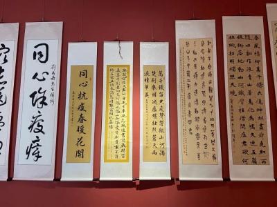 """免费参观,鹤山博物馆""""抗疫显英豪""""展,值得一看"""