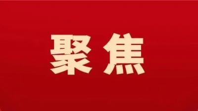 林应武到江海区督导省委巡视意见整改工作:从严从实,高质量完成巡视整改工作