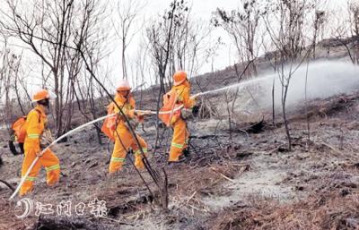 """森林火灾应急处置""""双盲""""演练举行 各支队伍展现出专业扑火能力"""