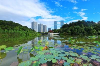 广东安排近19亿元补助资金  支持发热门诊和诊室建设
