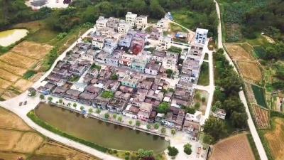 美丽乡村掠影——圣堂镇水塘村