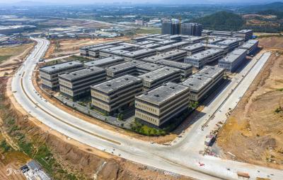 林应武:高质量建设中心城区产城融合示范区