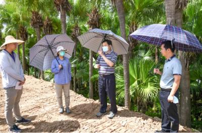 彭章瑞調研鄉村綠廊、都市農業生態公園要求用心用情打造人民滿意的精品工程